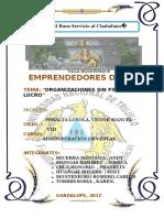 Organizaciones Sin Fines de Lucro.docx