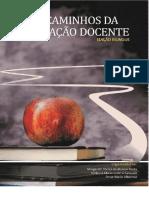 formação docente - ebook.pdf