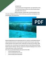 Pencegahan Korosi Pada Pipa Bawah Laut