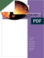 Steel Report 2010
