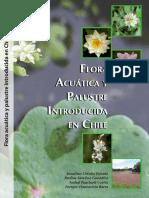 Flora Acuatica