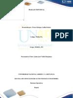 Paso 3 - Actividad Intermedia Trabajo Individual Dos