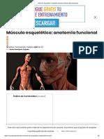 Músculo esquelético_ anatomía funcional _ Mundo Entrenamiento.pdf