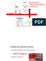 CytotoxicMechanisms.pdf