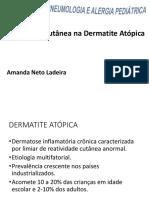 Amanda Neto Ladeira-Aula Hidracao Cutanea (1)