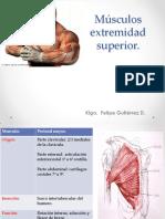 291729516-fisioterapia