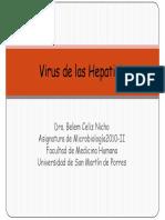 6 Micro Hepatitis2010