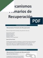 Mecanismos Primarios de Recuperacion