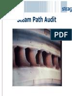 244677320-Steam-Path-Audit-of-Steam-Turbine.pdf