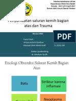 Ppt Urology