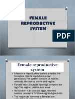 FEMALE-REPRODUCTIVE-SYSTEM (1).pptx