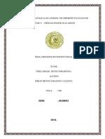 derecho constitucional 10.docx 18.pdf