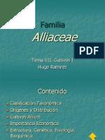 Vi Comercialización de Hortalizas en Venezuela 2010