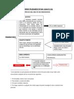Analisis Acuerdo Plenario Feminicidio