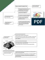 neurofisologia