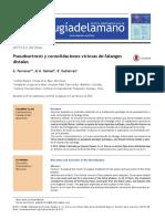Gómez, M. a., Gutiérrez, R., & Ferreres, A. (2015). Pseudoartrosis y Consolidaciones Viciosas de Falanges Distales. Revista Iberoamericana de Cirugía de La Mano, ¡