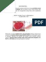BIOENERGITIKA dan RADIKAL BEBAS.docx