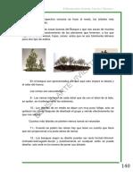 Bonsai_arte_viviente_teoria_tecnicaI-1parte_2[1].pdf