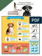 Proyecto COMPUTACION Paseo Mascotas