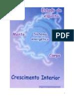 Saara Nousiainen - Crescimento Interior.pdf
