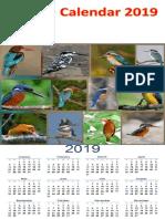 Kingfisher Calendar 2019