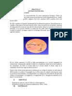 Practica 3 y 4 Adn y Codigo Genetico