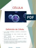 Celulas Original