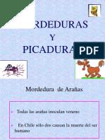 Mordedura Sy Pica Duras