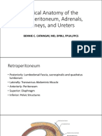1Surgical Anatomy Upper Tracts.pdf