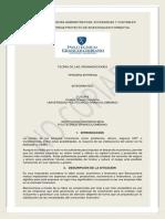 PROYECTO FINAL TEORÍA DE LAS ORGANIZACIONES