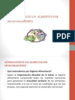 Exa 11.pdf