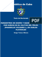 Parametros de diseno y manejo d - Tornes Olivera, Norge.pdf