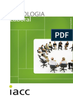07_psico_laboral.pdf