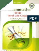 Muhammed alaihissalam in Torah and Gospel