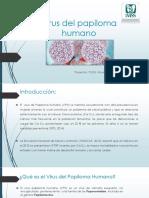 Virus-del-papiloma-humano.pptx