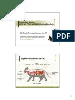 12 Perkembangan Sistem Pencernaan Pernafasan 2011