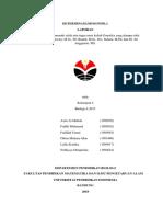 Laporan Determinasi Drosophila - Genetika