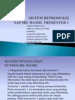 SISTEM REPRODUKSI ppt.pptx