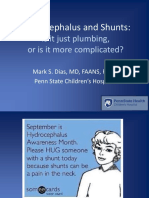 Hydrocephalus and Shunts. is It Just Plumbing or is It More Complicated