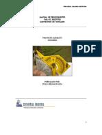 Manual de procedimiento para el regidtro geotecnico de Sondajes.pdf