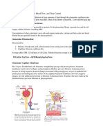 Glomerulus Filtration, Renal blood flow, and their control.docx