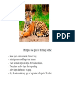 The Tiger is One Specie of the Family Felidae