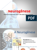 A Neurogênese