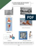 Medidas e Avaliação Física em educação física.pdf