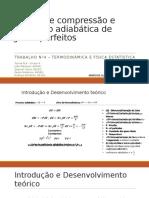 Estudo de Compressão Adiabática de Gases