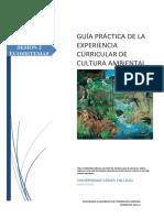 Cultura Ambiental Guía 2