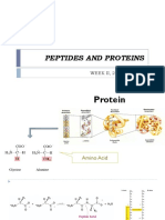 p2 Biokim i Peptides and Protein