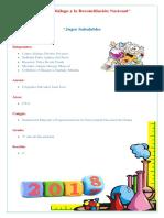 Informe de Proyecto de Feria de Ciencias