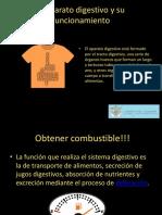 sistema digestivo.ppsx
