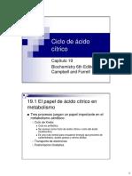 CAP 19 Ciclo de ácido cítrico.pdf